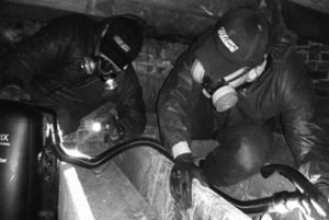 Pest Inspectors In Crawlspace