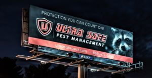 Home Pest Protection