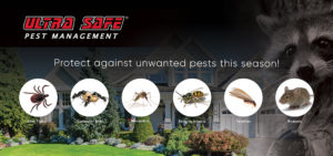 Home Pest Protection In Massachusetts
